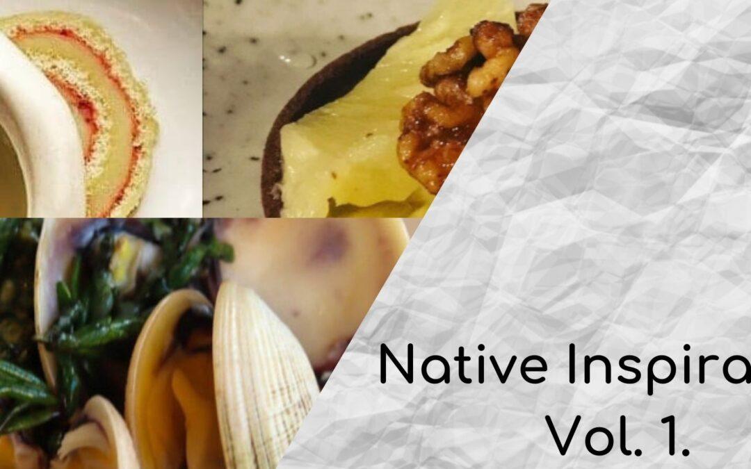 Native Inspiration Volume 1