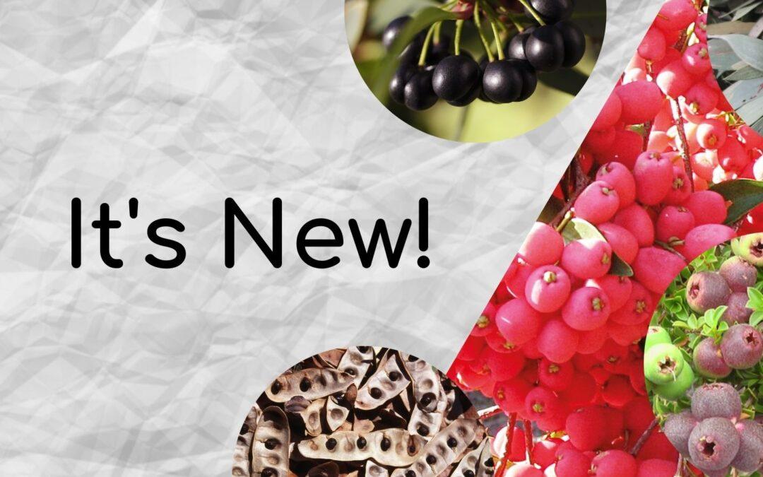 New Kurrajong Seeds